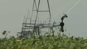 Compuesto del sistema de irrigación del campo almacen de metraje de vídeo
