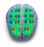 Computador do cérebro Imagens de Stock