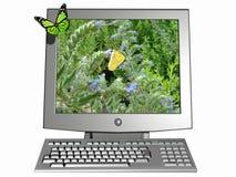 Computador ecológico Ilustração do Vetor