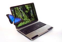 Computadora portátil con la mariposa Fotografía de archivo libre de regalías