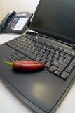 Computadora portátil con la pimienta 2 Imagenes de archivo