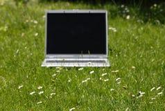 Computadora portátil en hierba verde Foto de archivo libre de regalías