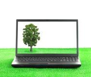 Computadora portátil en la hierba con un árbol fotografía de archivo libre de regalías