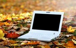 Computadora portátil en una escena del automn Fotos de archivo libres de regalías