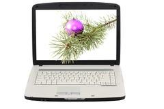 Computadora portátil. La visualización - foto de la Navidad. imágenes de archivo libres de regalías
