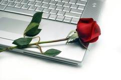 Computadora portátil y Rose Fotografía de archivo libre de regalías