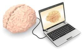 Computer angeschlossen an ein menschliches Gehirn Stockbild
