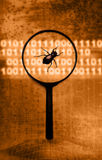 Computer bug Royalty Free Stock Images
