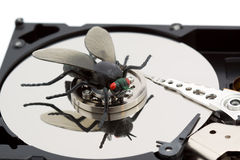 Computer bug - problem concept Stock Photography
