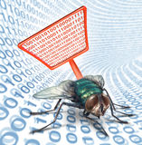 Computer Bug Security Royalty Free Stock Images