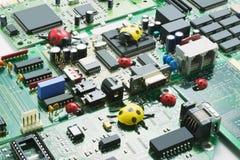 Computer Bugs Concept Stock Photos