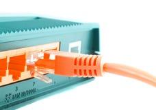Computer cable. Stock Photos