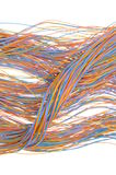 Computer cable network connections Stock Image