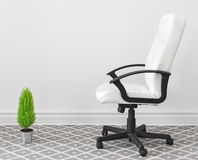 Computer chair and green plant Royalty Free Stock Image