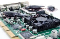 A Computer Circuit Board with Bugs Stock Photos