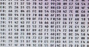 Computer code in hexadecimal