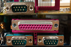 Computer connector Stock Image