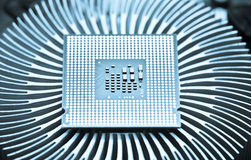 Computer cpu (central processor unit) chip Stock Images