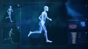 Computer, der menschlichen Körper röntgt lizenzfreie abbildung