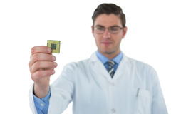 Computer engineer holding computer chip Stock Photography