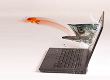 Computer Fishing. Stock Photography