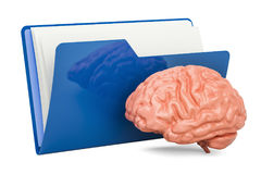 Computer folder icon with human brain, 3D rendering. On white background Royalty Free Stock Image