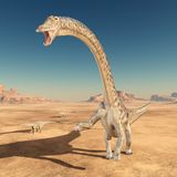 Dinosaur Diplodocus in the desert. Computer generated 3D illustration with the dinosaur Diplodocus in the desert Royalty Free Stock Image