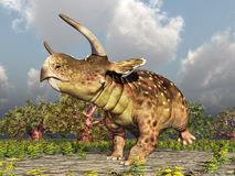 Dinosaur Nasutoceratops in the forest. Computer generated 3D illustration with the dinosaur Nasutoceratops in the forest Royalty Free Stock Images