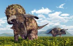 Dinosaur Nasutoceratops. Computer generated 3D illustration with the dinosaur Nasutoceratops in a landscape Royalty Free Stock Image