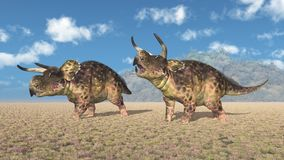 Dinosaur Nasutoceratops in a landscape royalty free stock image