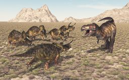 Tyrannosaurus Rex and Nasutoceratops. Computer generated 3D illustration with the dinosaur Tyrannosaurus Rex attacking the dinosaur Nasutoceratops Stock Image