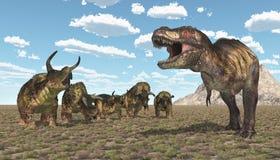 Tyrannosaurus Rex and Nasutoceratops. Computer generated 3D illustration with the dinosaur Tyrannosaurus Rex attacking the dinosaur Nasutoceratops Stock Photo