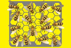 A honeycomb full of honey bees making honey. A computer generated illustration image of a piece of hexagonal holed honeycomb plate with many honey bees making vector illustration