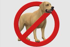 An image of a no dogs allowed sign royalty free stock photos