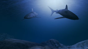 Computer generated sharks swimming close to the ocean floor Royalty Free Stock Images