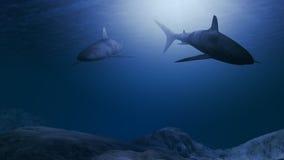 Computer geproduceerde haaien die dicht bij de oceaanbodem zwemmen stock illustratie