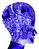 Computer Head 33. An conceptual image of a cyborg women who is very clever, we can tell this by the big head with an added circuitbored effect Royalty Free Stock Image