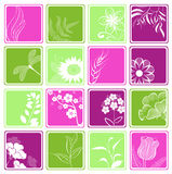 Computer icons with flowers and branches Royalty Free Stock Image