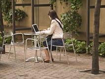 Computer im Park Lizenzfreie Stockbilder