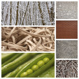 Computer imaging of nature with brick wall and rubber bands Royalty Free Stock Images