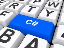 Computer key with c# vector illustration