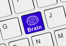 Computer keyboard with brain key Stock Photos