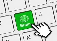 Computer keyboard with brain key Stock Image