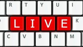 Computer keyboard live Royalty Free Stock Photo