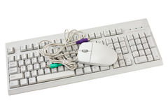 Computer keyboard and  mouse isolated Royalty Free Stock Photo