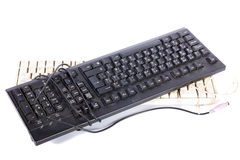 Computer keyboards Royalty Free Stock Photos