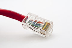 Computer LAN Cables Red Royalty Free Stock Photography
