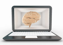Computer laptop and brain Stock Photo