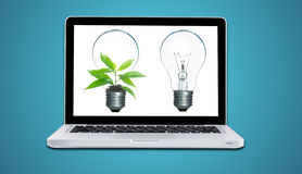 Computer laptop and plant growing inside light bulb isolate. On blue background Stock Photos