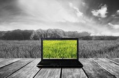 Computer laptop on wooden terrace with nature view background. Contrast colorful computer screen with black and white background. royalty free stock photos